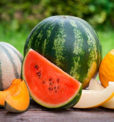 Melone 1 375x400 - Melons