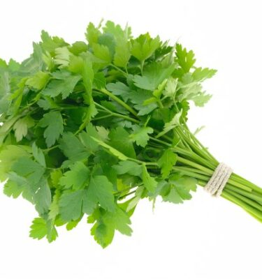 Prezzemolo 375x400 - Parsley