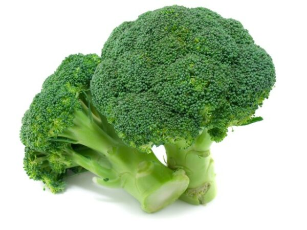 Broccoli broccolo