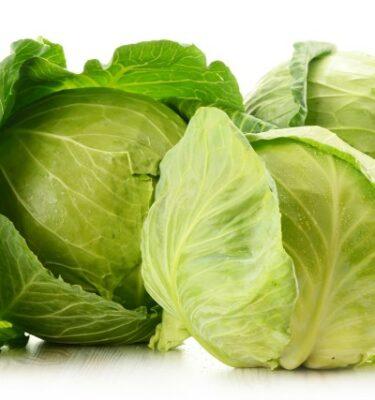 cavolo cappuccio 1 375x400 - White Cabbage