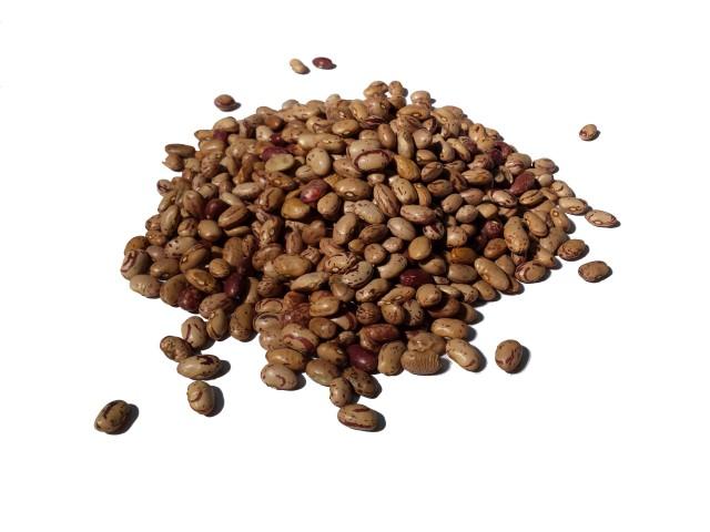 fagioli borlotti bella contadina pietrelcina - Beans