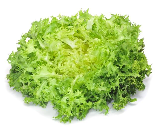 frisee lettuce - Frisee