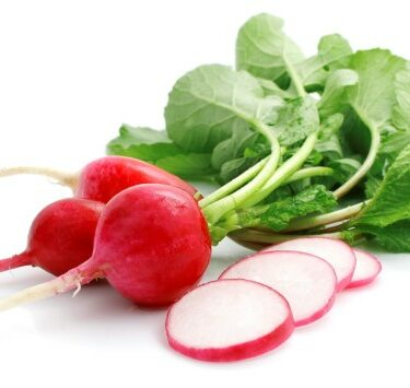 ravanelli 375x355 - Radish red small