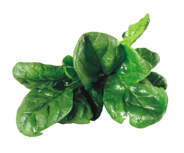 romana - Spinach