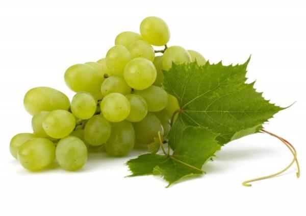 Trauben uva verde